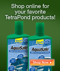 Shop online for your favorite TetraPond products!