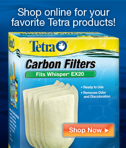 Shop online for your favorite Tetra products
