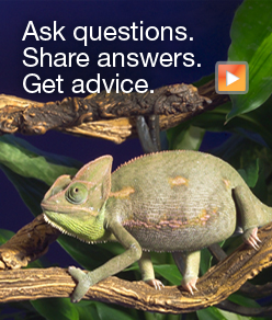 Ask questions.  Share answers.  Get advice.