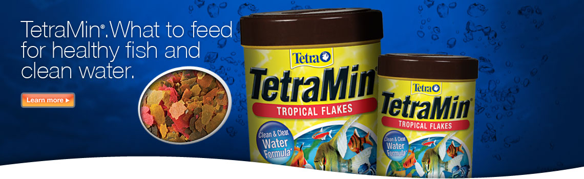TetraMin.  What to feed for healthy fish and clean water.